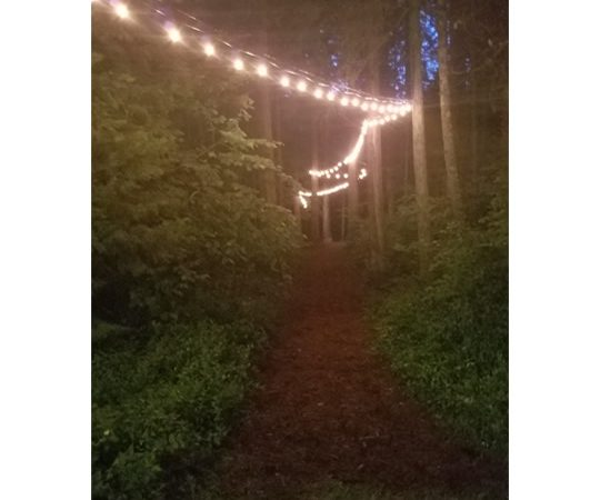 Outdoor Path Night